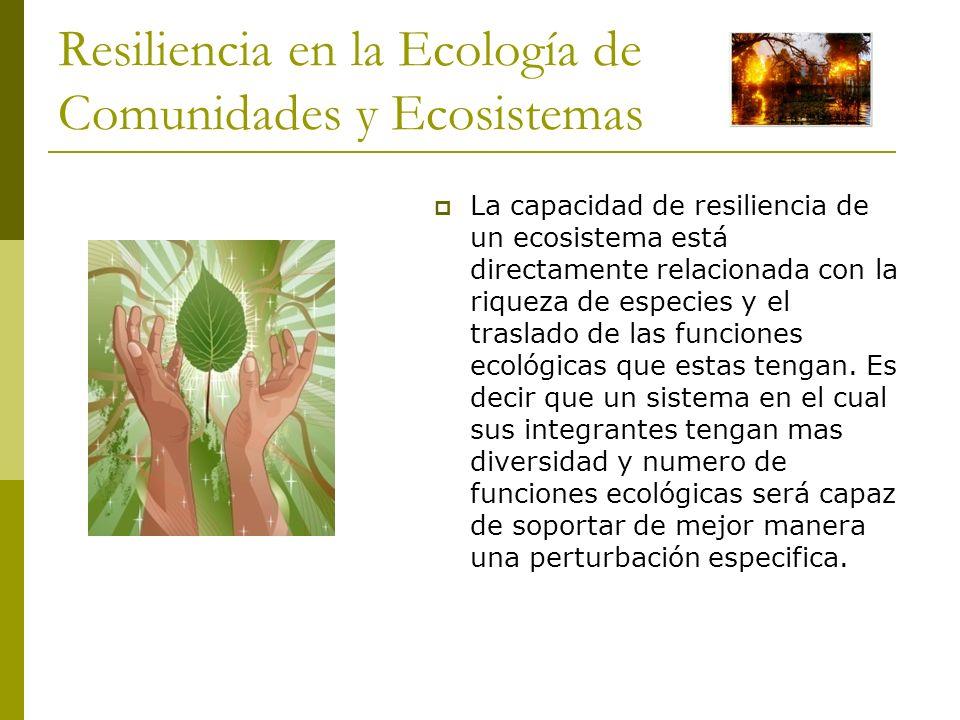 Resiliencia en la Ecología de Comunidades y Ecosistemas La capacidad de resiliencia de un ecosistema está directamente relacionada con la riqueza de e