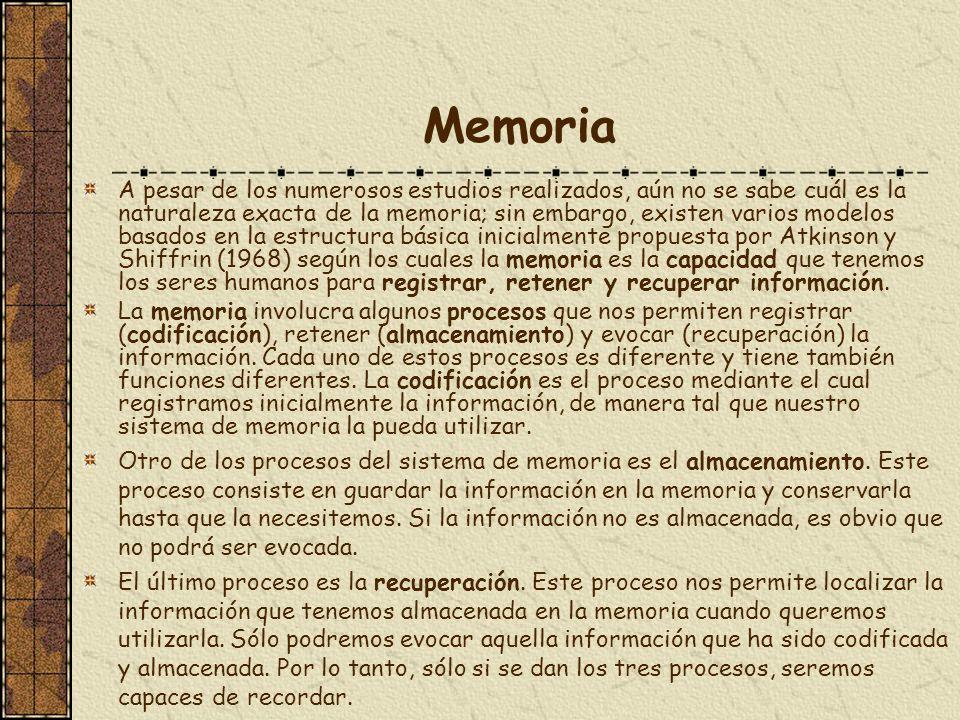 Memoria A pesar de los numerosos estudios realizados, aún no se sabe cuál es la naturaleza exacta de la memoria; sin embargo, existen varios modelos b