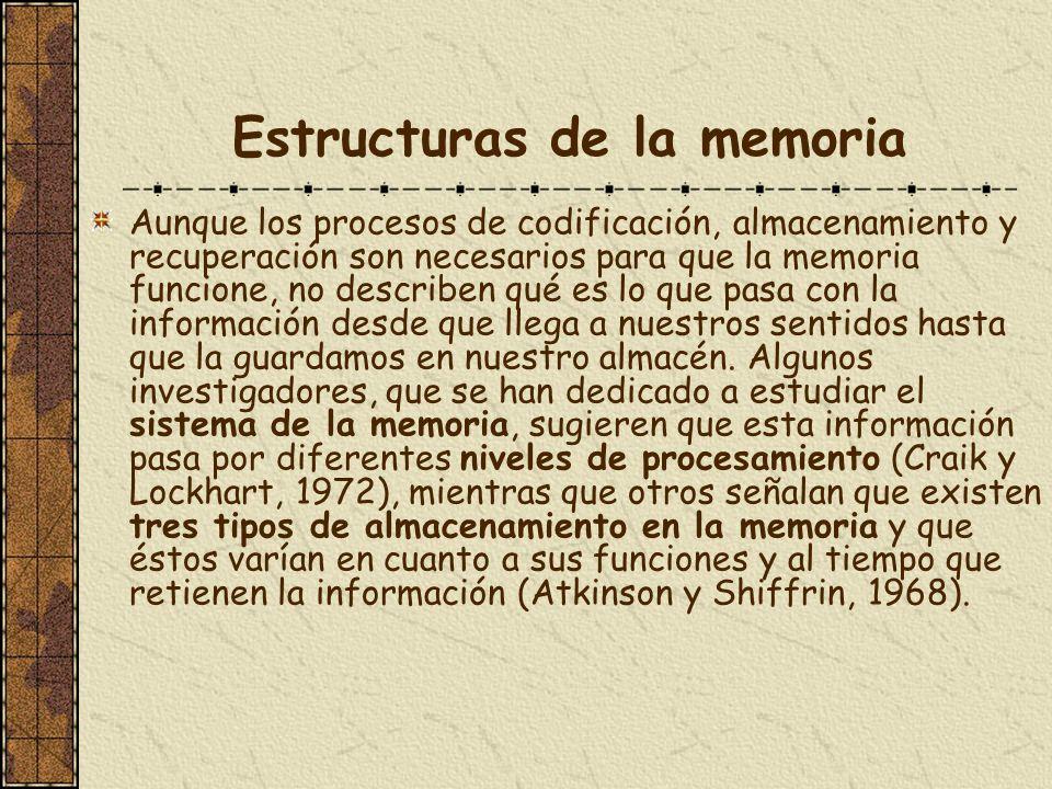 Estructuras de la memoria Aunque los procesos de codificación, almacenamiento y recuperación son necesarios para que la memoria funcione, no describen