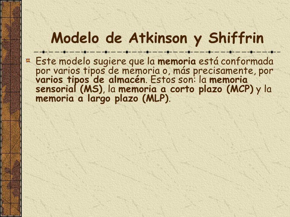 Modelo de Atkinson y Shiffrin Este modelo sugiere que la memoria está conformada por varios tipos de memoria o, más precisamente, por varios tipos de