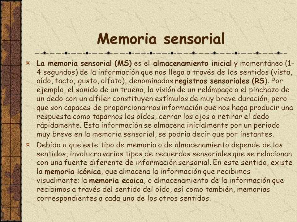 Memoria sensorial La memoria sensorial (MS) es el almacenamiento inicial y momentáneo (1- 4 segundos) de la información que nos llega a través de los