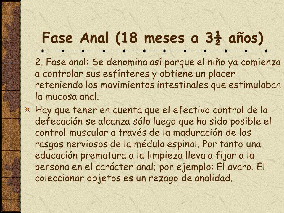Fase Anal (18 meses a 3½ años) 2. Fase anal: Se denomina así porque el niño ya comienza a controlar sus esfínteres y obtiene un placer reteniendo los
