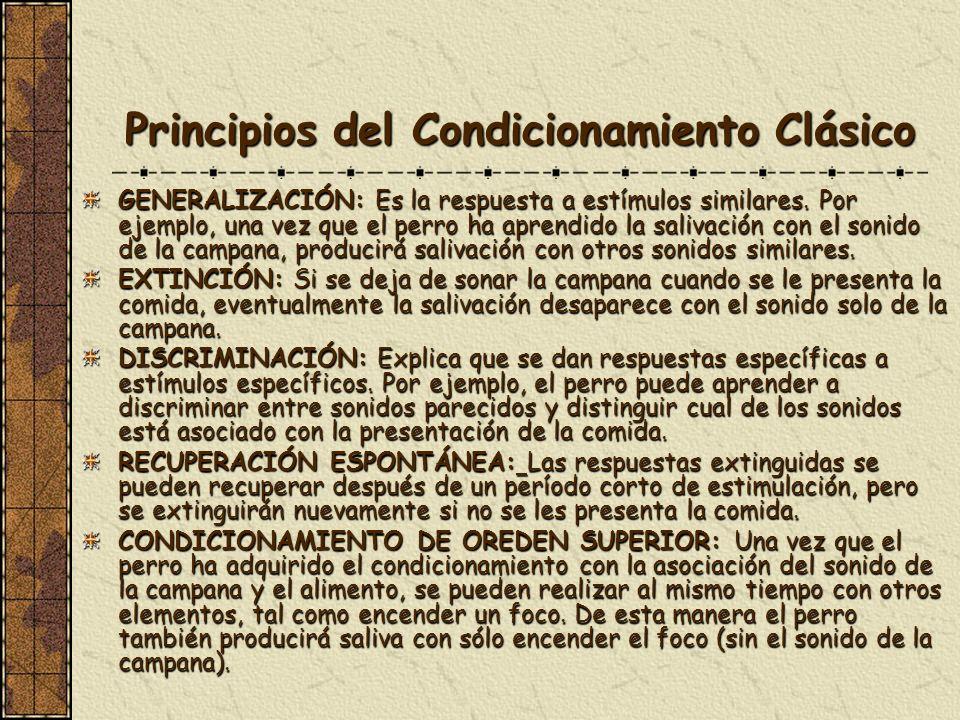 Principios del Condicionamiento Clásico GENERALIZACIÓN: Es la respuesta a estímulos similares. Por ejemplo, una vez que el perro ha aprendido la saliv