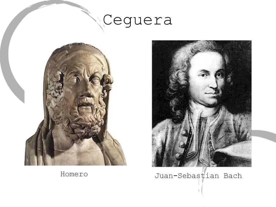 Ceguera Juan-Sebastian Bach Homero