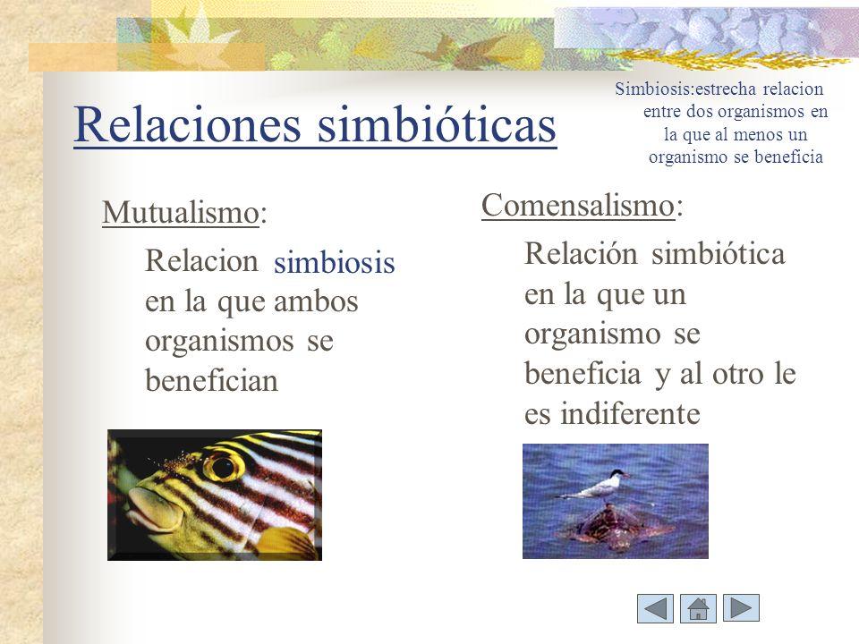 Relaciones simbióticas Mutualismo: Relacion en la que ambos organismos se benefician Comensalismo: Relación simbiótica en la que un organismo se beneficia y al otro le es indiferente Simbiosis:estrecha relacion entre dos organismos en la que al menos un organismo se beneficia simbiosis
