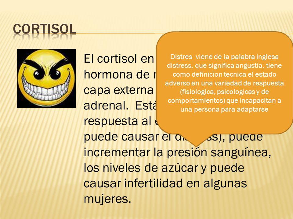 La relacion de la resiliencia con el cortisol no es una de resultados positivos ya que el cortisol va a afectar la habilidad de sobreponerse luego de una situacion.
