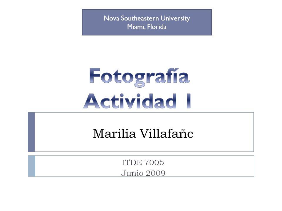 ITDE 7005 Junio 2009 Nova Southeastern University Miami, Florida Marilia Villafañe