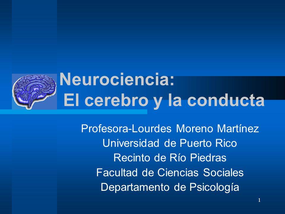 1 Neurociencia: El cerebro y la conducta Profesora-Lourdes Moreno Martínez Universidad de Puerto Rico Recinto de Río Piedras Facultad de Ciencias Soci