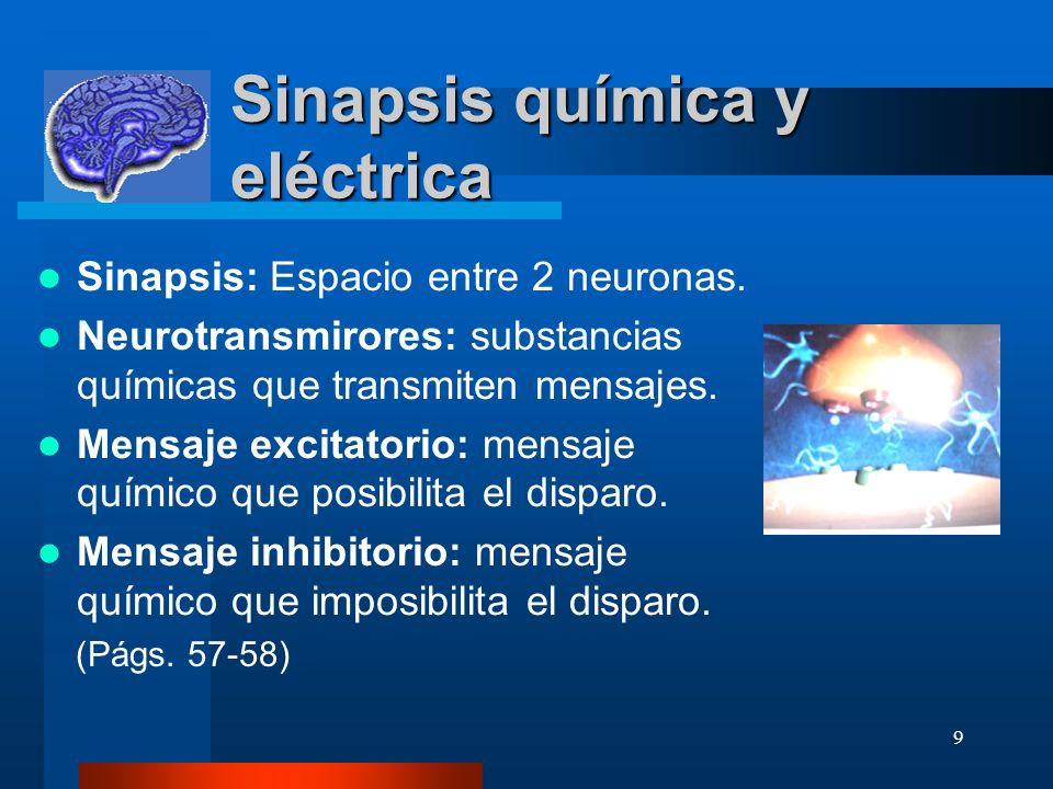 9 Sinapsis química y eléctrica Sinapsis: Espacio entre 2 neuronas. Neurotransmirores: substancias químicas que transmiten mensajes. Mensaje excitatori