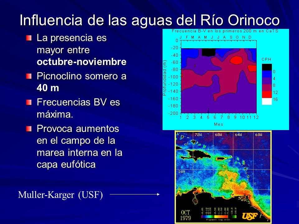 Influencia de las aguas del Río Orinoco La presencia es mayor entre octubre-noviembre Picnoclino somero a 40 m Frecuencias BV es máxima. Provoca aumen