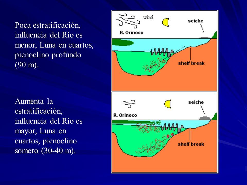 Poca estratificación, influencia del Río es menor, Luna en cuartos, picnoclino profundo (90 m). Aumenta la estratificación, influencia del Río es mayo