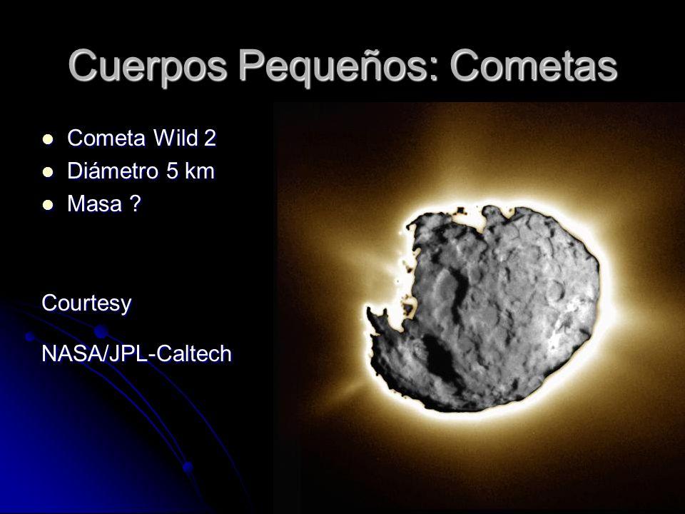 Cuerpos Pequeños: Cometas Cometa Wild 2 Cometa Wild 2 Diámetro 5 km Diámetro 5 km Masa ? Masa ?CourtesyNASA/JPL-Caltech