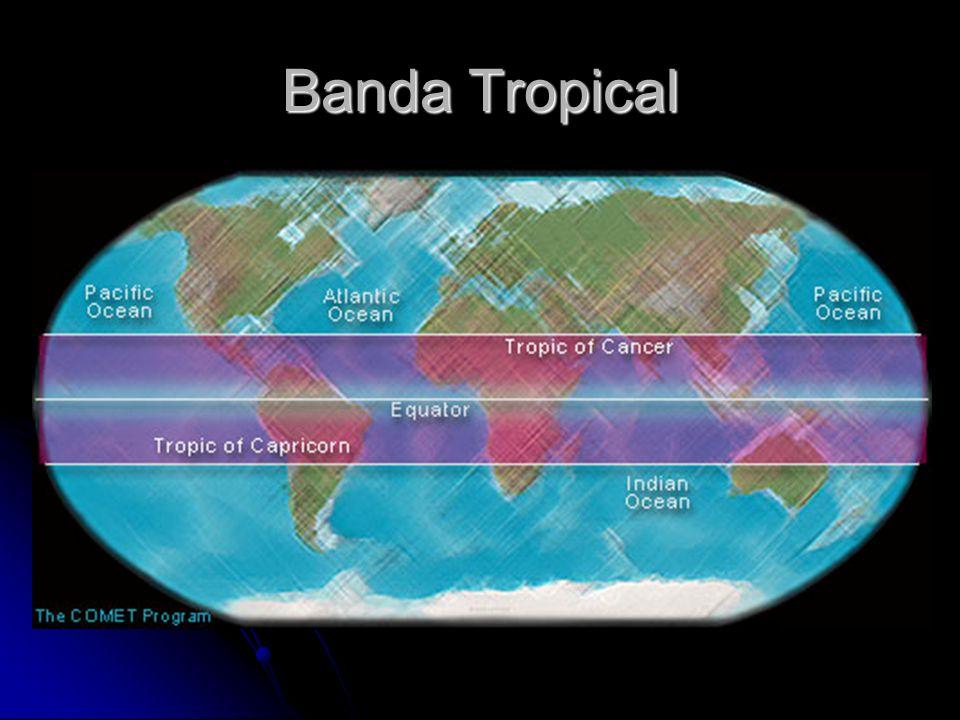Implicaciones de nuestra posición Estamos rodeado de agua oceánica y la temperatura de su superficie es mayor de 25° C.