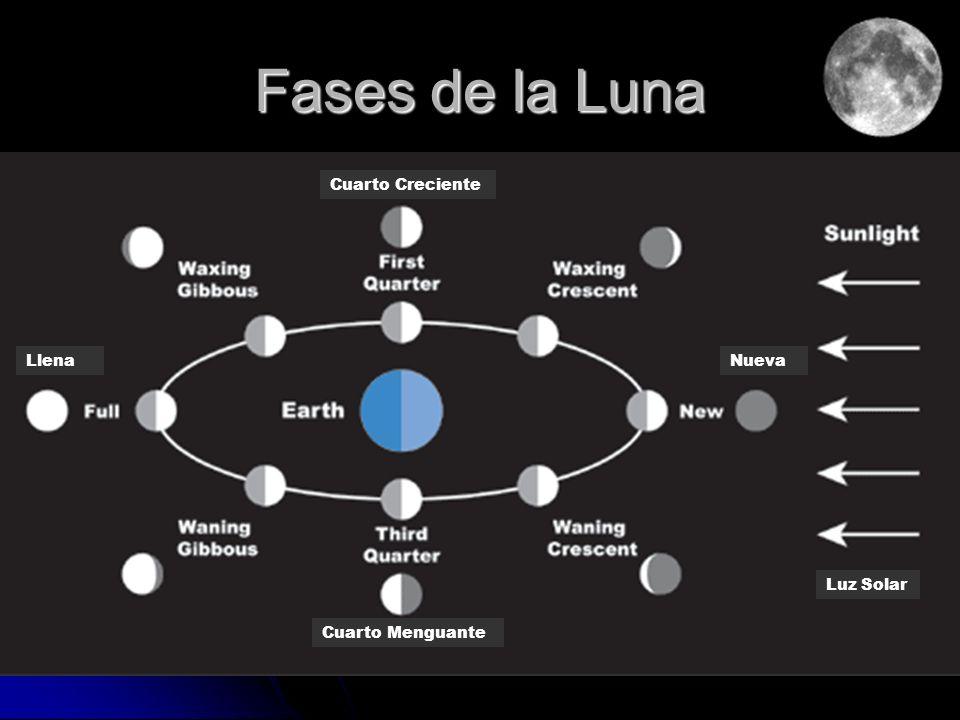 Fases de la Luna Cuarto Creciente LlenaNueva Cuarto Menguante Luz Solar