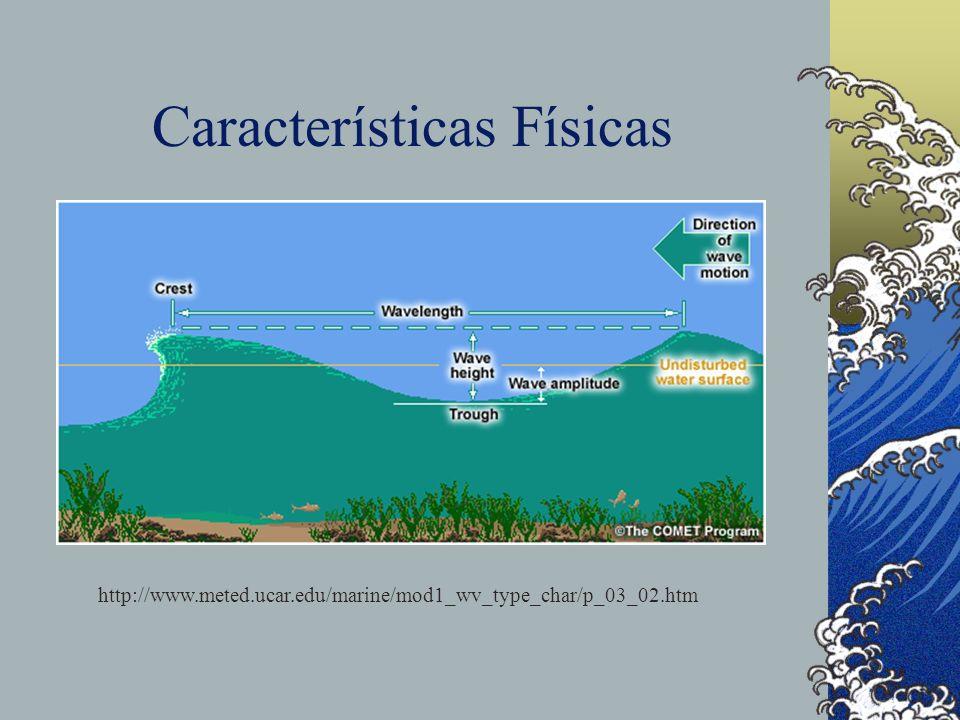Características Físicas http://www.meted.ucar.edu/marine/mod1_wv_type_char/p_03_02.htm