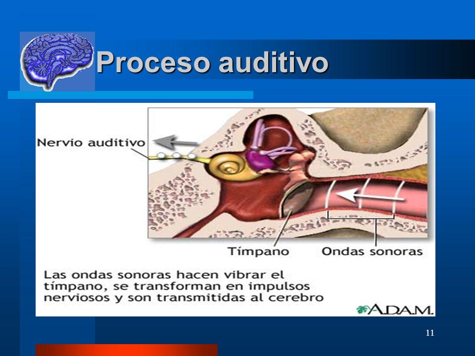 11 Proceso auditivo Proceso auditivo