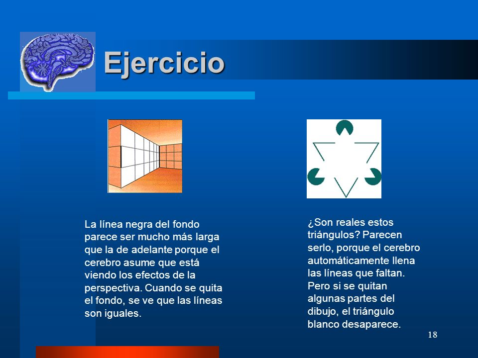 18 Ejercicio Ejercicio ¿Son reales estos triángulos? Parecen serlo, porque el cerebro automáticamente llena las líneas que faltan. Pero si se quitan a