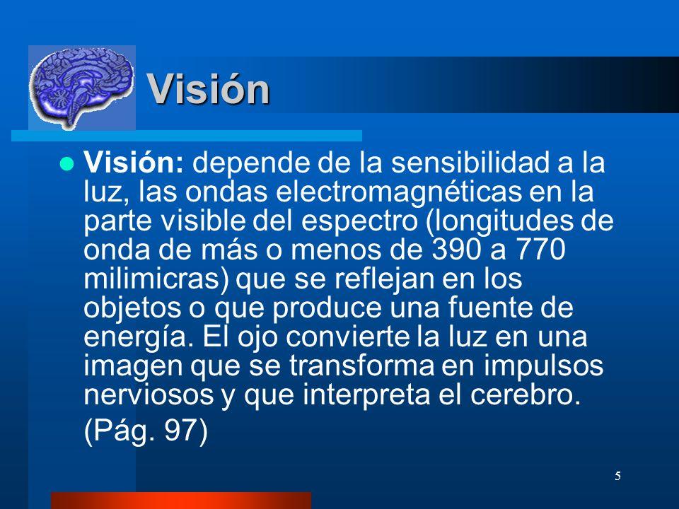 5 Visión Visión Visión: depende de la sensibilidad a la luz, las ondas electromagnéticas en la parte visible del espectro (longitudes de onda de más o