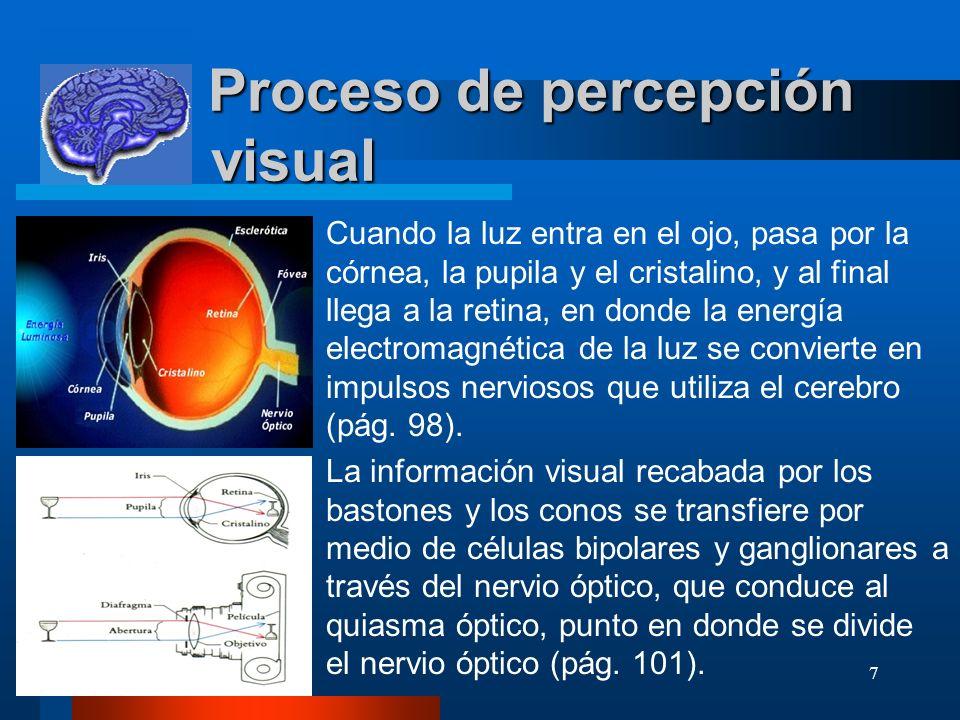 7 Proceso de percepción visual Proceso de percepción visual Cuando la luz entra en el ojo, pasa por la córnea, la pupila y el cristalino, y al final l