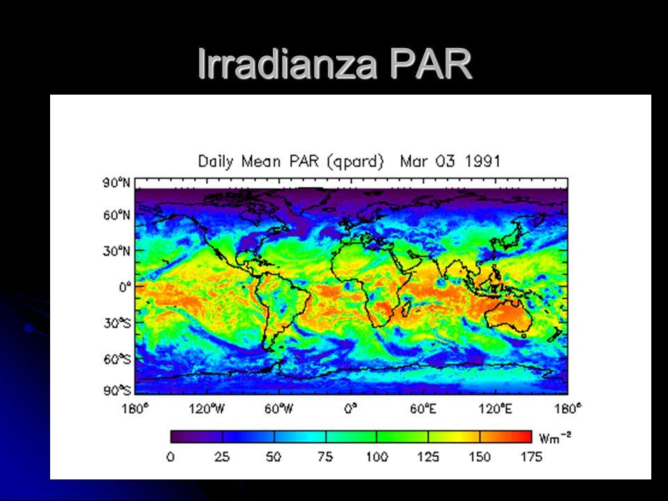 Irradianza PAR