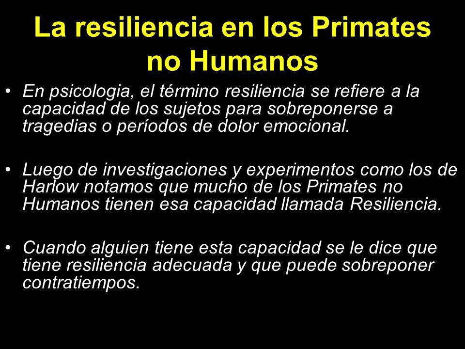 La resiliencia en los Primates no Humanos En psicologia, el término resiliencia se refiere a la capacidad de los sujetos para sobreponerse a tragedias
