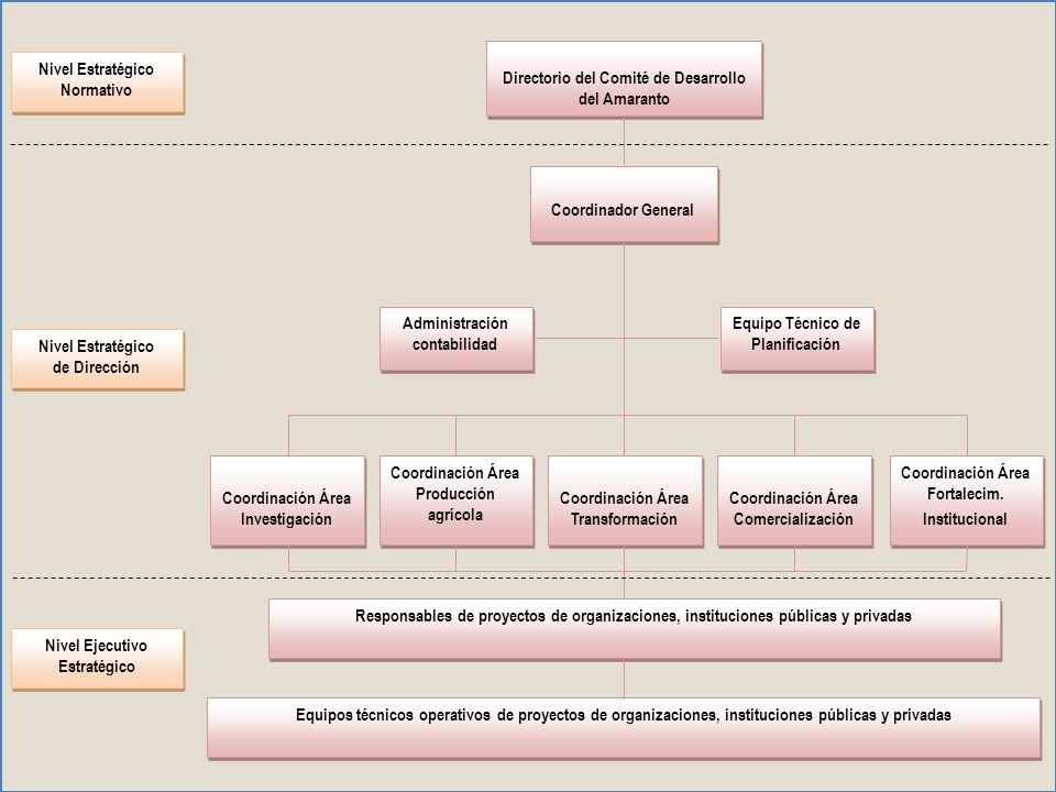 Nivel estratégico normativo, constituido por el Directorio, su ámbito de acción es lo estratégico, el mediano y largo plazo, las políticas generales en los ámbitos del Programa.