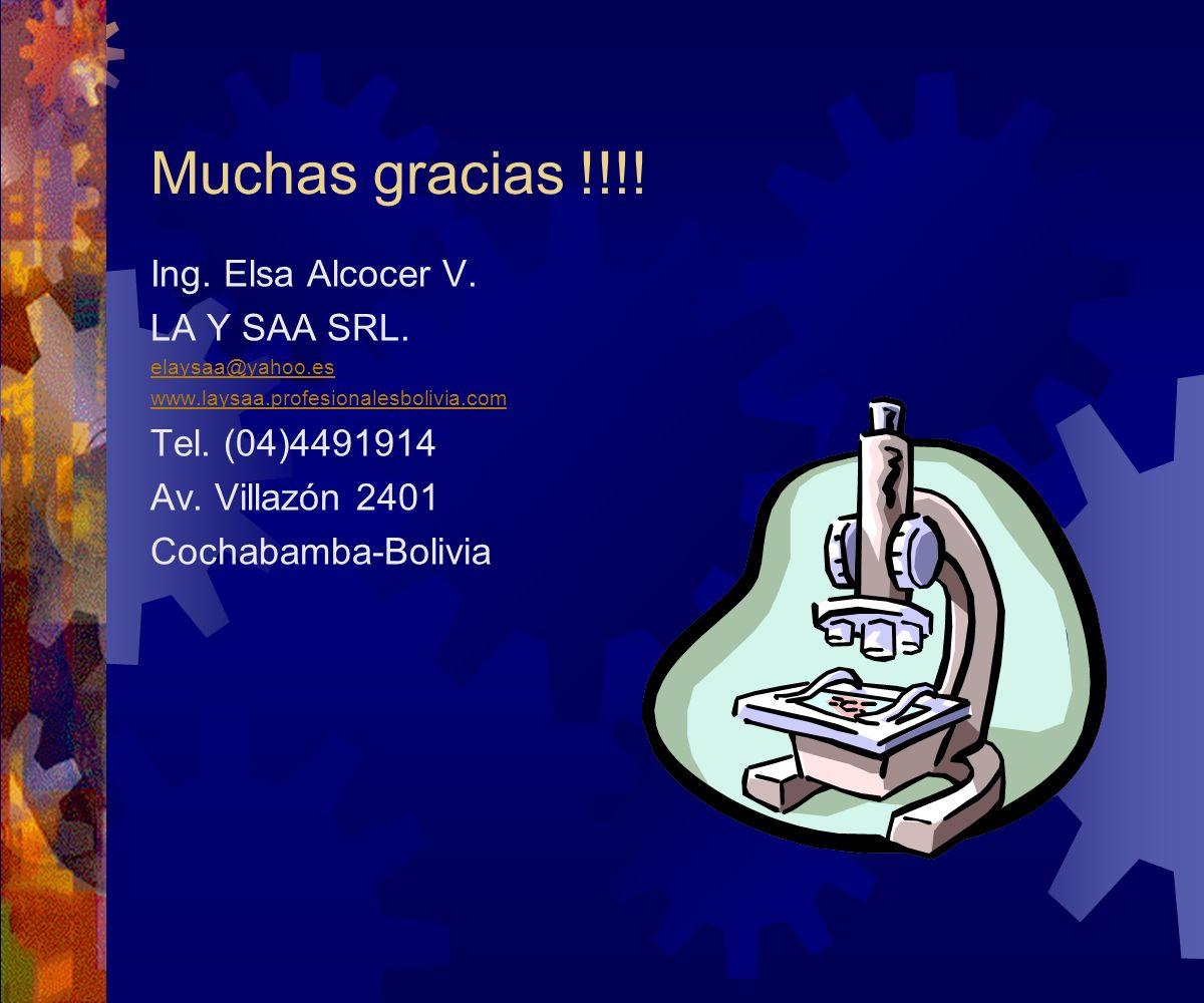 Muchas gracias !!!! Ing. Elsa Alcocer V. LA Y SAA SRL. elaysaa@yahoo.es www.laysaa.profesionalesbolivia.com Tel. (04)4491914 Av. Villazón 2401 Cochaba