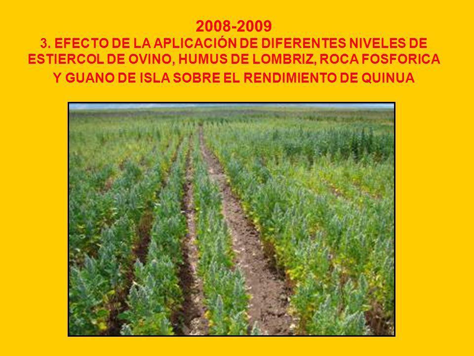 2008-2009 3. EFECTO DE LA APLICACIÓN DE DIFERENTES NIVELES DE ESTIERCOL DE OVINO, HUMUS DE LOMBRIZ, ROCA FOSFORICA Y GUANO DE ISLA SOBRE EL RENDIMIENT