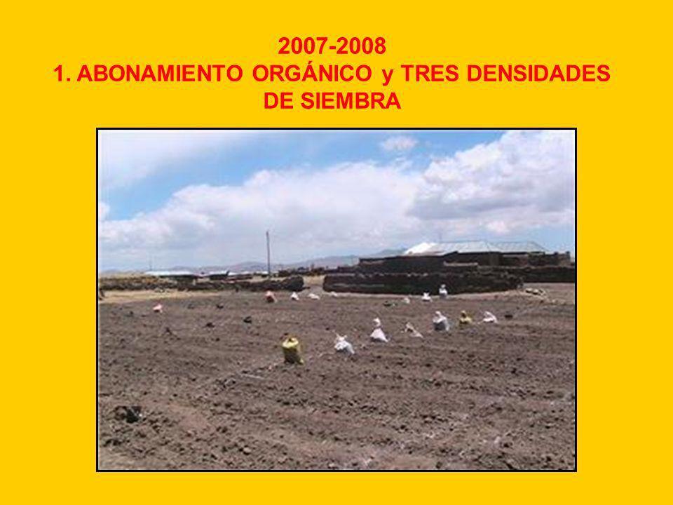 MATERIALES Y MÉTODOS Fuente de abono Niveles (ha) Densidad de siembra (kg/ha) Época de aplicación (área de parcela 18 m2) Guano de isla60-40-00 (N-P-K)8, 10, 12Siembra Estiércol12 t/ha8, 10, 12Siembra Biol300-400 l/ha8, 10, 12 300 l/ha (0.5 lts/parc.) Inicio de panoja y panojamiento 400 l/ha (0.6 lts/parc.) Floración y grano lechoso.