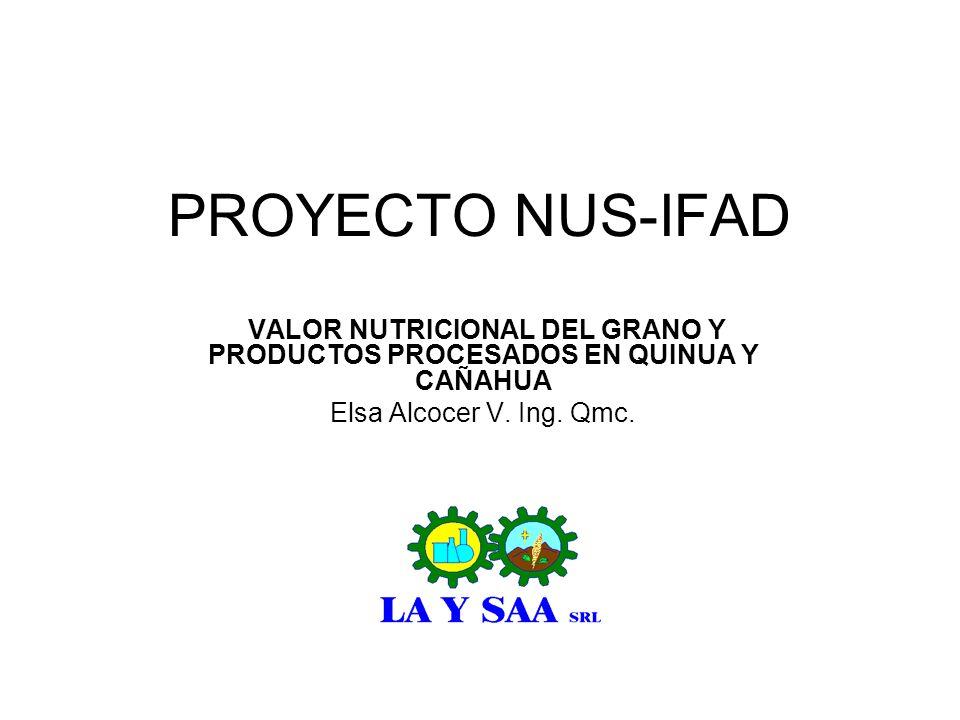 PROYECTO NUS-IFAD VALOR NUTRICIONAL DEL GRANO Y PRODUCTOS PROCESADOS EN QUINUA Y CAÑAHUA Elsa Alcocer V. Ing. Qmc.