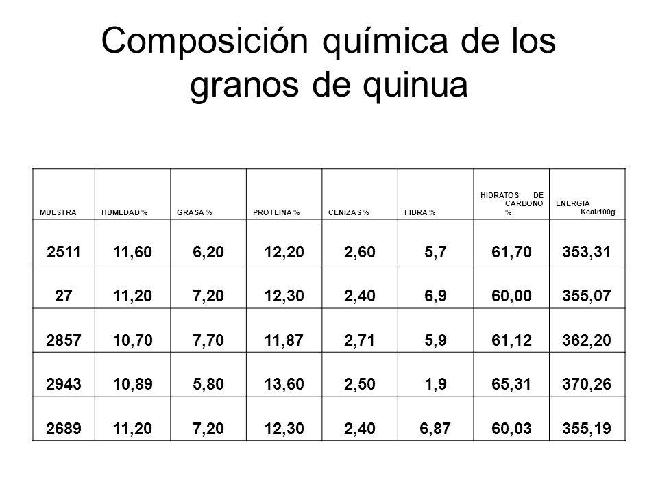Composición química de los granos de quinua MUESTRAHUMEDAD %GRASA %PROTEINA %CENIZAS %FIBRA % HIDRATOS DE CARBONO % ENERGIA Kcal/100g 251111,606,2012,