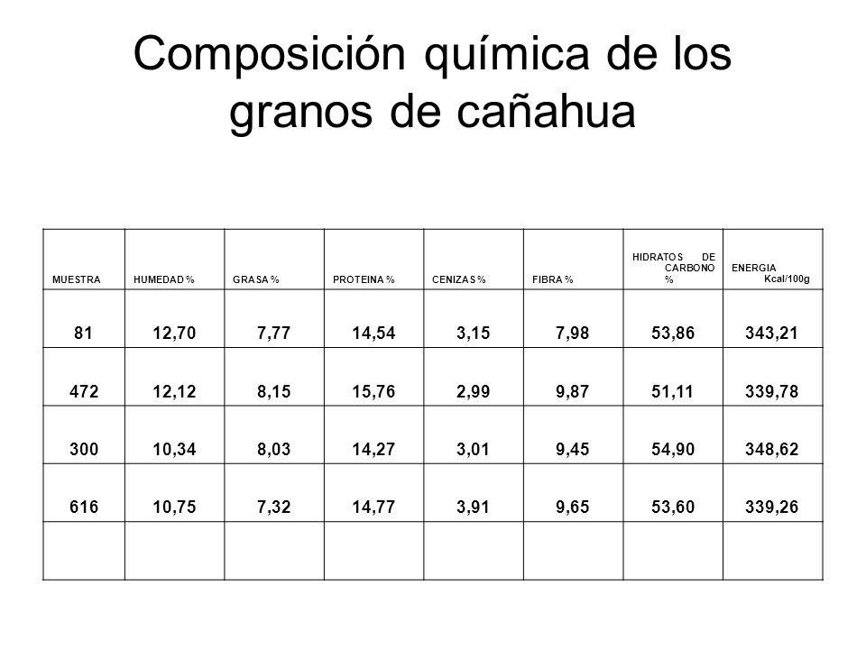 Composición química de los granos de cañahua MUESTRAHUMEDAD %GRASA %PROTEINA %CENIZAS %FIBRA % HIDRATOS DE CARBONO % ENERGIA Kcal/100g 8112,707,7714,5