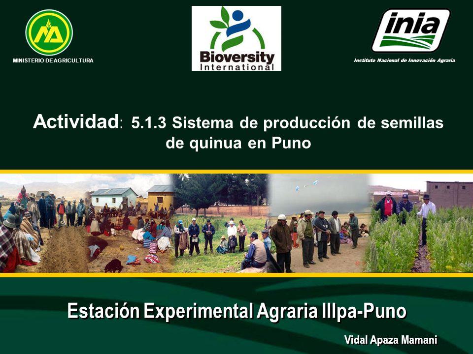 Estación Experimental Agraria Illpa-Puno MINISTERIO DE AGRICULTURA Instituto Nacional de Innovación Agraria Vidal Apaza Mamani Actividad : 5.1.3 Siste