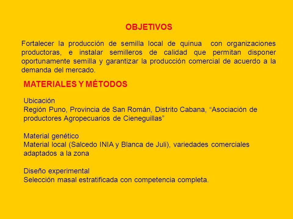 MATERIALES Y MÉTODOS Ubicación Región Puno, Provincia de San Román, Distrito Cabana, Asociación de productores Agropecuarios de Cieneguillas Material