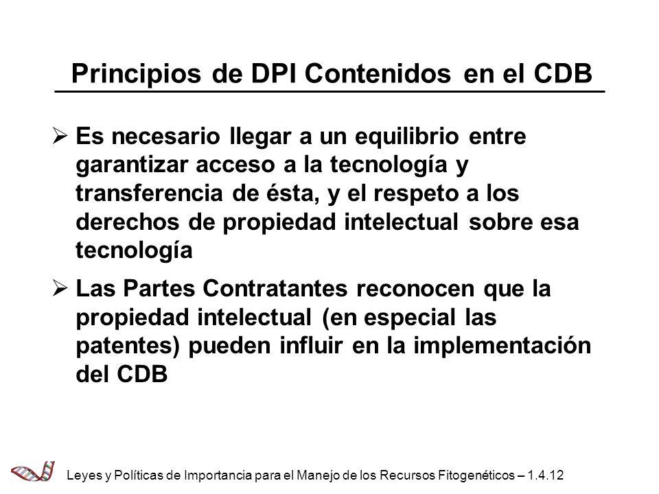 Principios de DPI Contenidos en el CDB Es necesario llegar a un equilibrio entre garantizar acceso a la tecnología y transferencia de ésta, y el respe