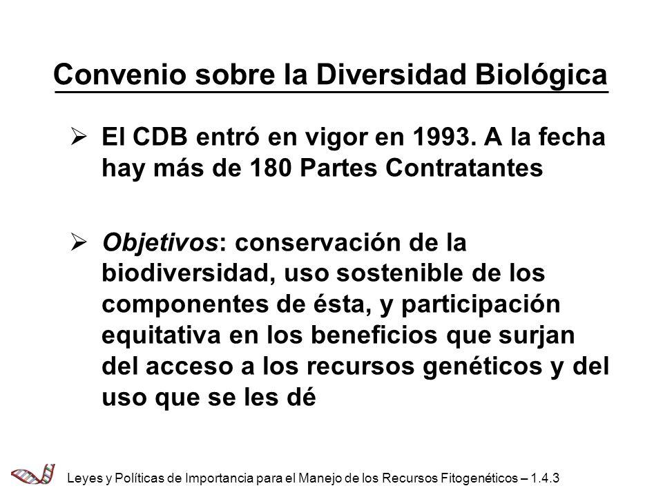 Convenio sobre la Diversidad Biológica El CDB entró en vigor en 1993. A la fecha hay más de 180 Partes Contratantes Objetivos: conservación de la biod