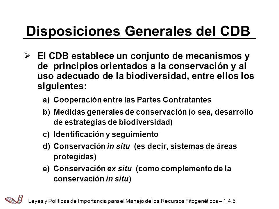 Disposiciones Generales del CDB El CDB establece un conjunto de mecanismos y de principios orientados a la conservación y al uso adecuado de la biodiv
