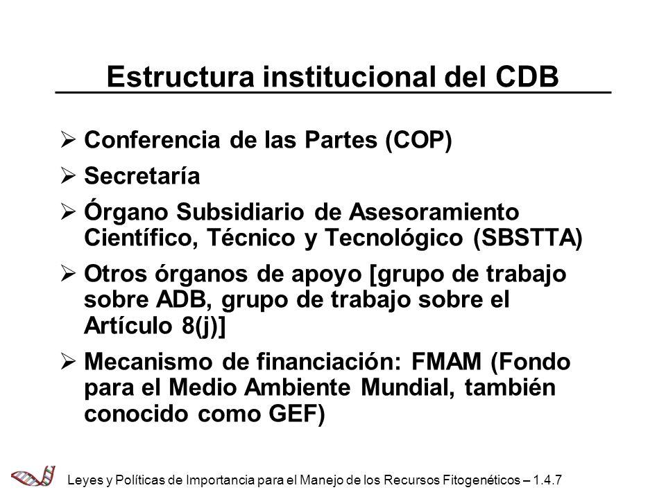 Estructura institucional del CDB Conferencia de las Partes (COP) Secretaría Órgano Subsidiario de Asesoramiento Científico, Técnico y Tecnológico (SBS