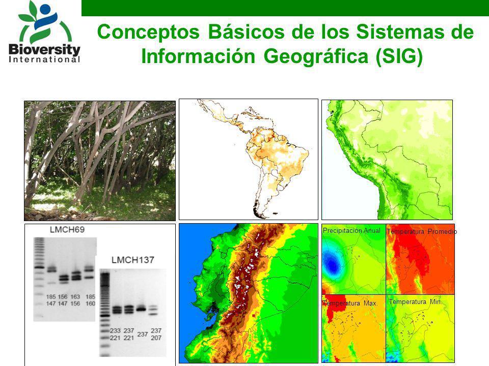 Conceptos Básicos de los Sistemas de Información Geográfica (SIG) Precipitación Anual Temperatura Promedio Temperatura Max. Temperatura Min.
