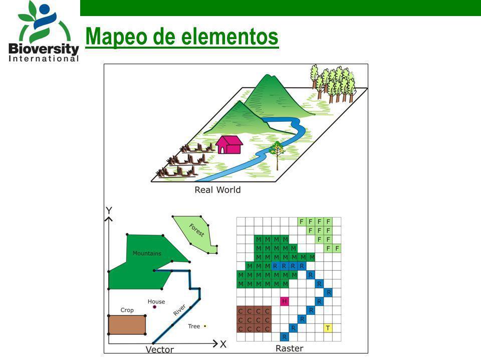 Mapeo de elementos