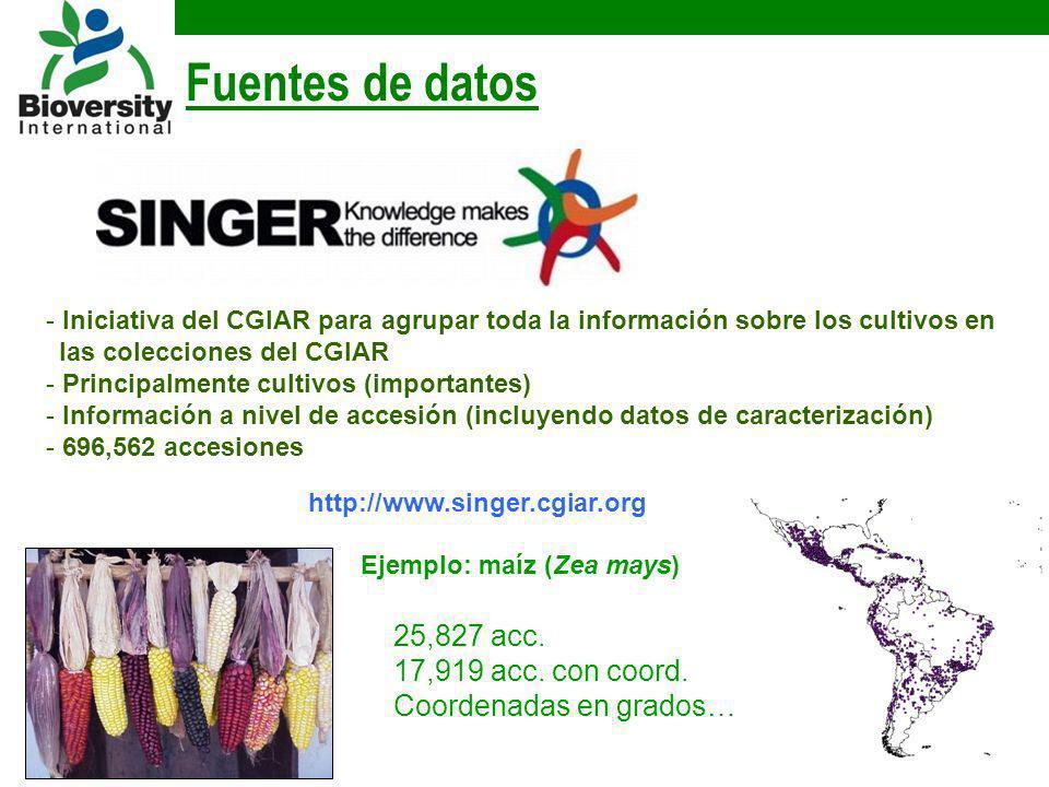http://www.singer.cgiar.org Fuentes de datos Ejemplo: maíz (Zea mays) 25,827 acc. 17,919 acc. con coord. Coordenadas en grados… - Iniciativa del CGIAR