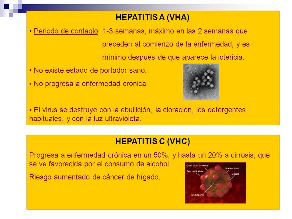 HEPATITIS A (VHA) Periodo de contagio: 1-3 semanas, máximo en las 2 semanas que preceden al comienzo de la enfermedad, y es mínimo después de que apar