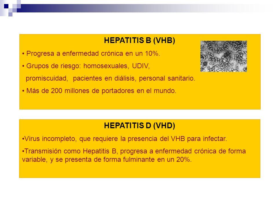 HEPATITIS D (VHD) Virus incompleto, que requiere la presencia del VHB para infectar. Transmisión como Hepatitis B, progresa a enfermedad crónica de fo
