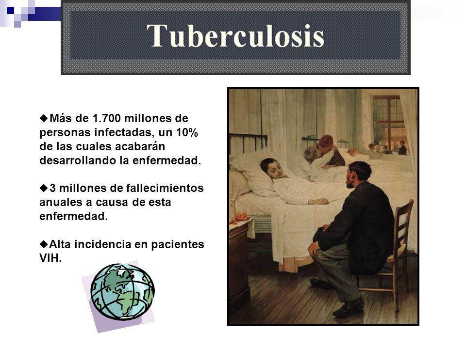 Más de 1.700 millones de personas infectadas, un 10% de las cuales acabarán desarrollando la enfermedad. 3 millones de fallecimientos anuales a causa