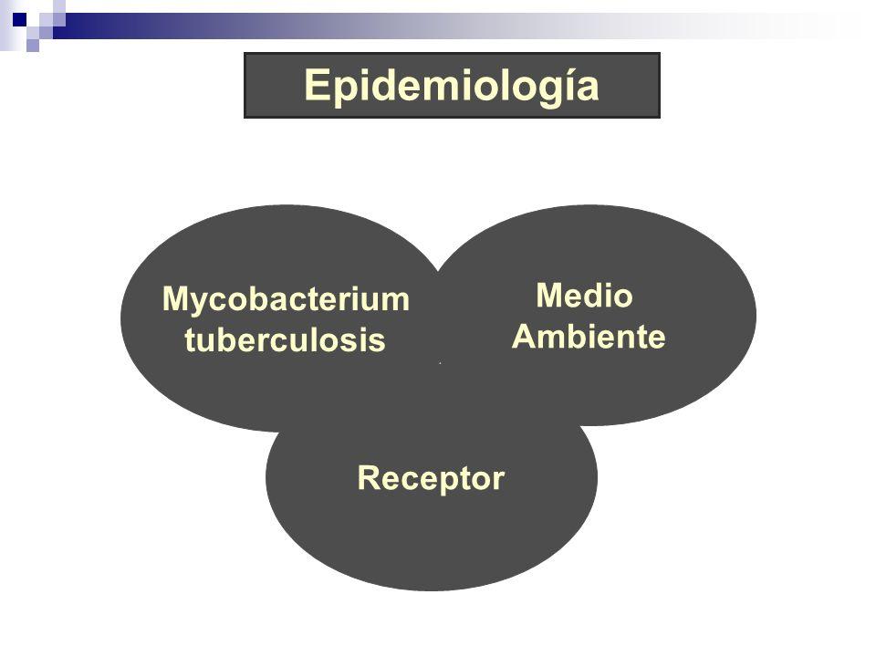Epidemiología Mycobacterium tuberculosis Medio Ambiente Receptor