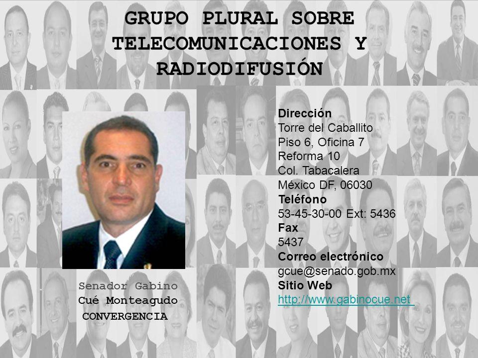 Dirección Torre del Caballito Piso 6, Oficina 7 Reforma 10 Col. Tabacalera México DF, 06030 Teléfono 53-45-30-00 Ext: 5436 Fax 5437 Correo electrónico