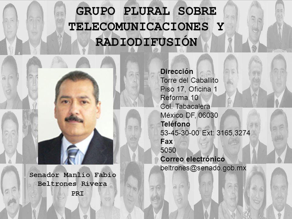 Dirección Torre del Caballito Piso 17, Oficina 1 Reforma 10 Col. Tabacalera México DF, 06030 Teléfono 53-45-30-00 Ext: 3165,3274 Fax 5050 Correo elect