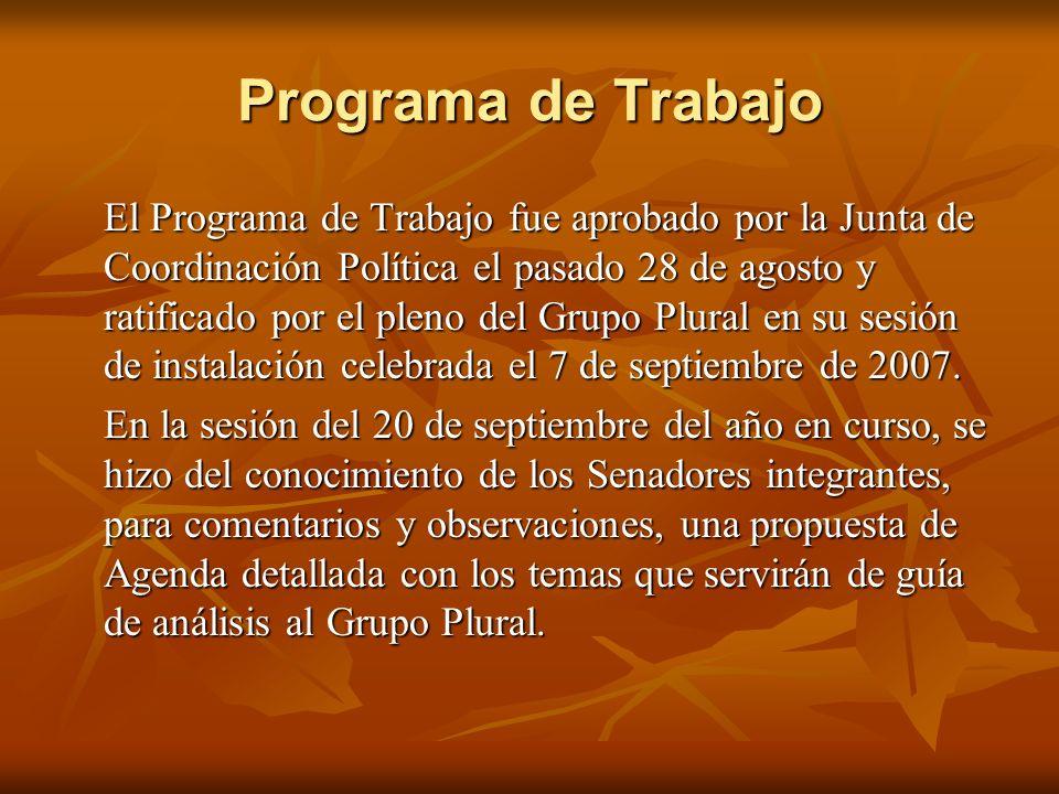 Programa de Trabajo El Programa de Trabajo fue aprobado por la Junta de Coordinación Política el pasado 28 de agosto y ratificado por el pleno del Grupo Plural en su sesión de instalación celebrada el 7 de septiembre de 2007.