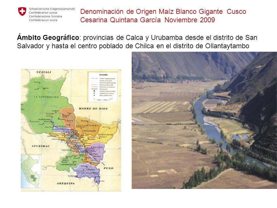 Ámbito Geográfico: provincias de Calca y Urubamba desde el distrito de San Salvador y hasta el centro poblado de Chilca en el distrito de Ollantaytamb