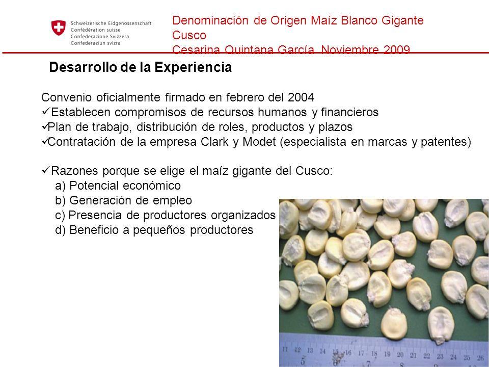 Denominación de Origen Maíz Blanco Gigante Cusco Cesarina Quintana García Noviembre 2009 Desarrollo de la Experiencia Convenio oficialmente firmado en